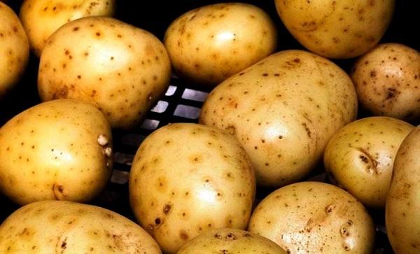 Картошка – лечение от всех болезней!
