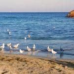 Одесса – жемчужина у моря